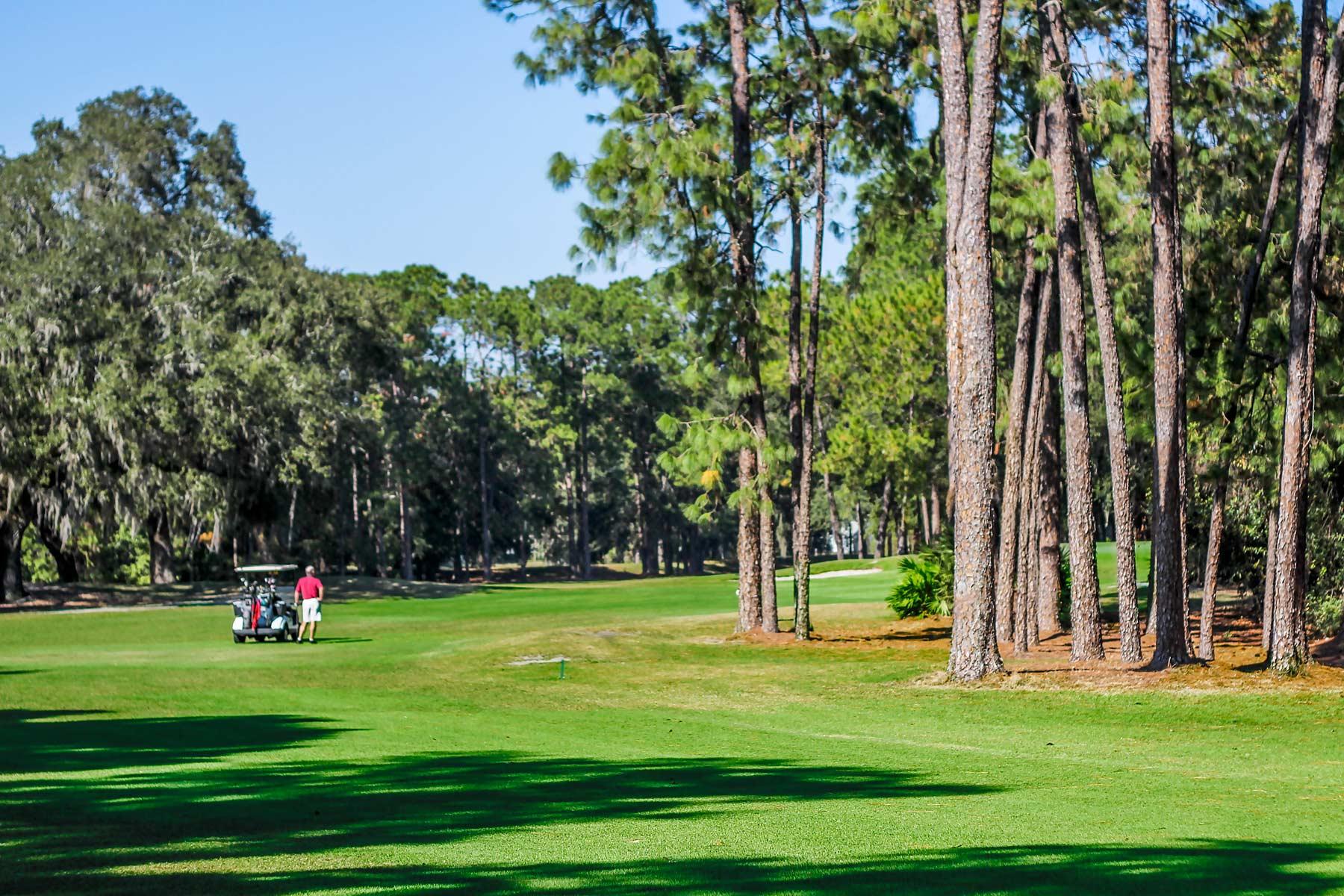 Welcome to Plantation at Leesburg Golf - Leesburg, Florida